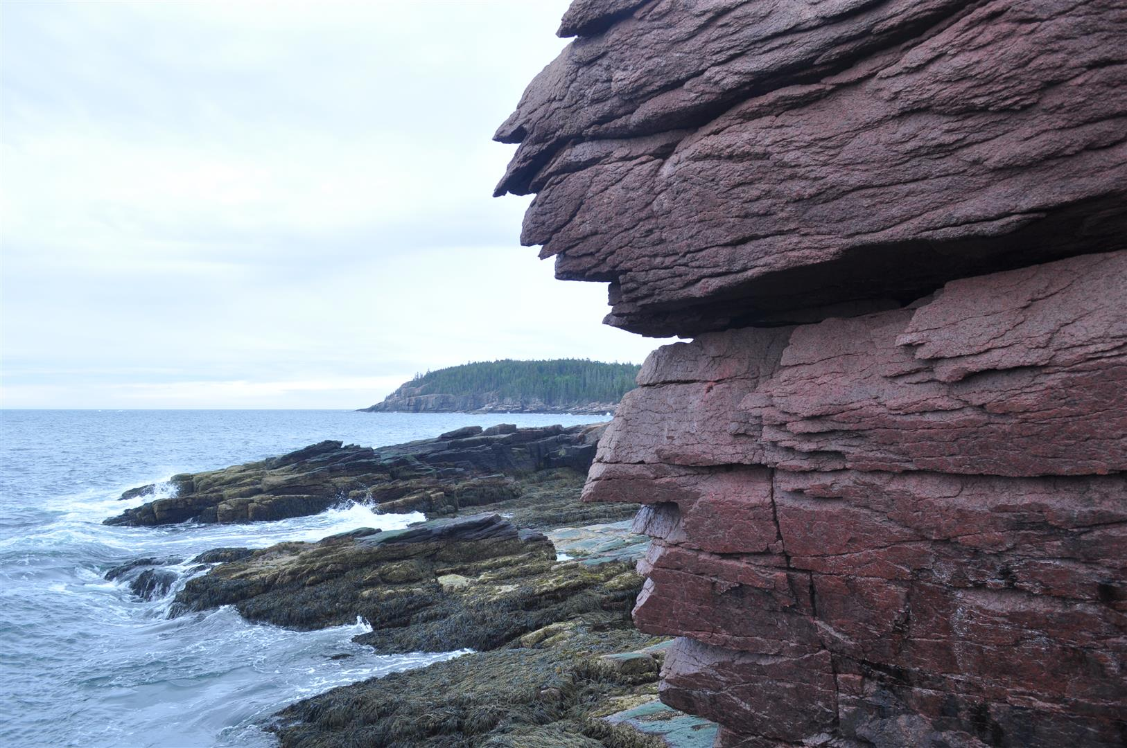 Acadia National Park 5