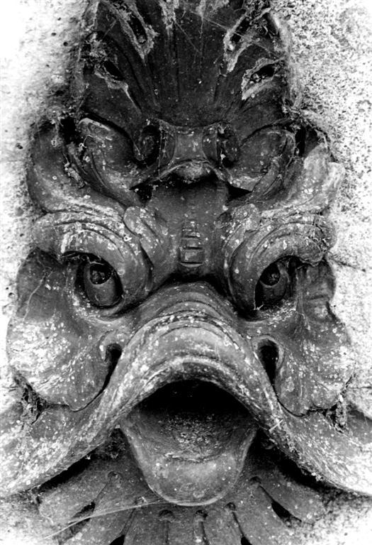Fishface 1