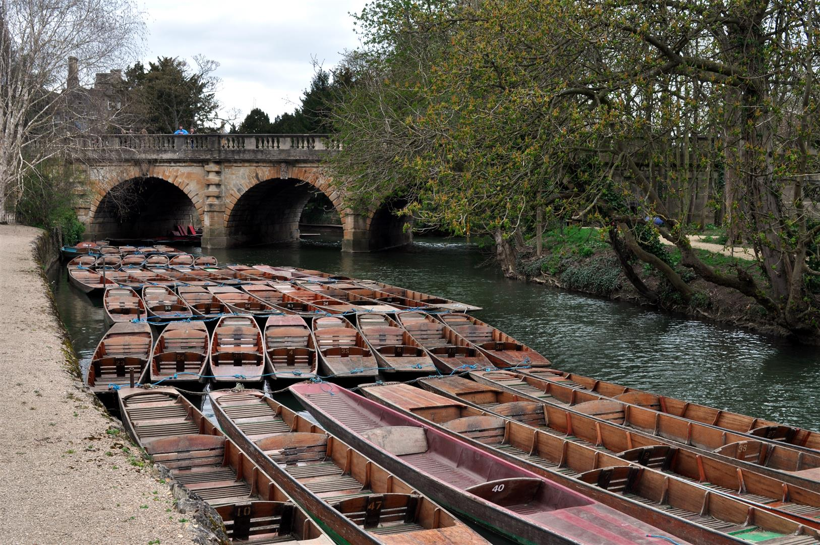 Punts 1, River Cherwell, Oxford