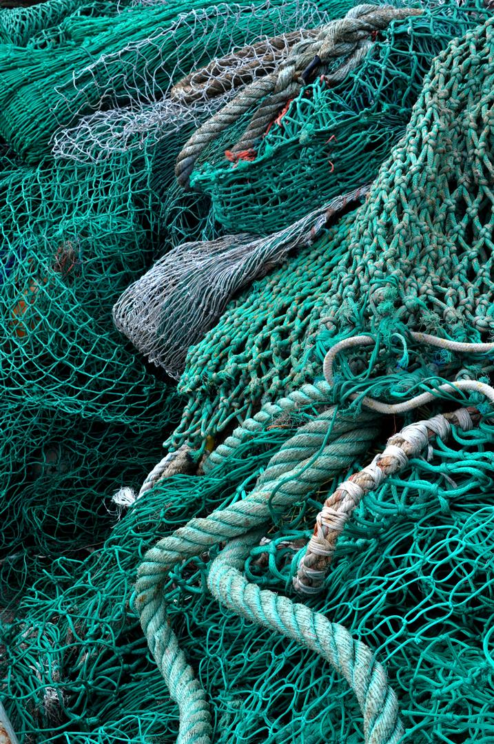 Nets 2, Torquay Harbor
