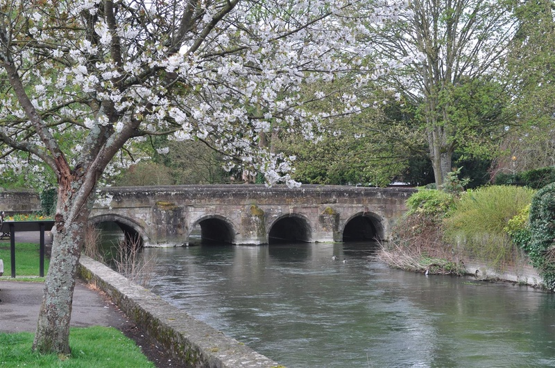 Bridge over the Avon, Salisbury