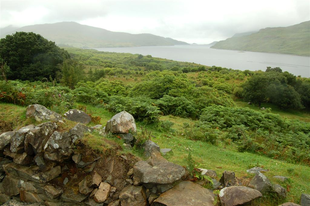 Irish Lough