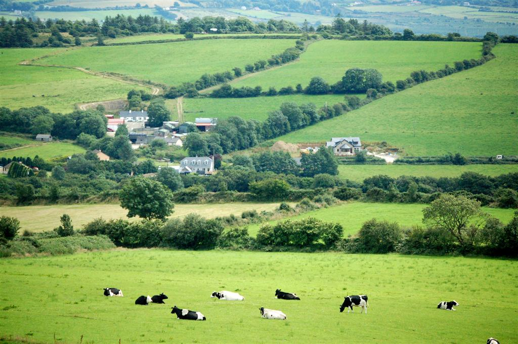Kilarney Countryside