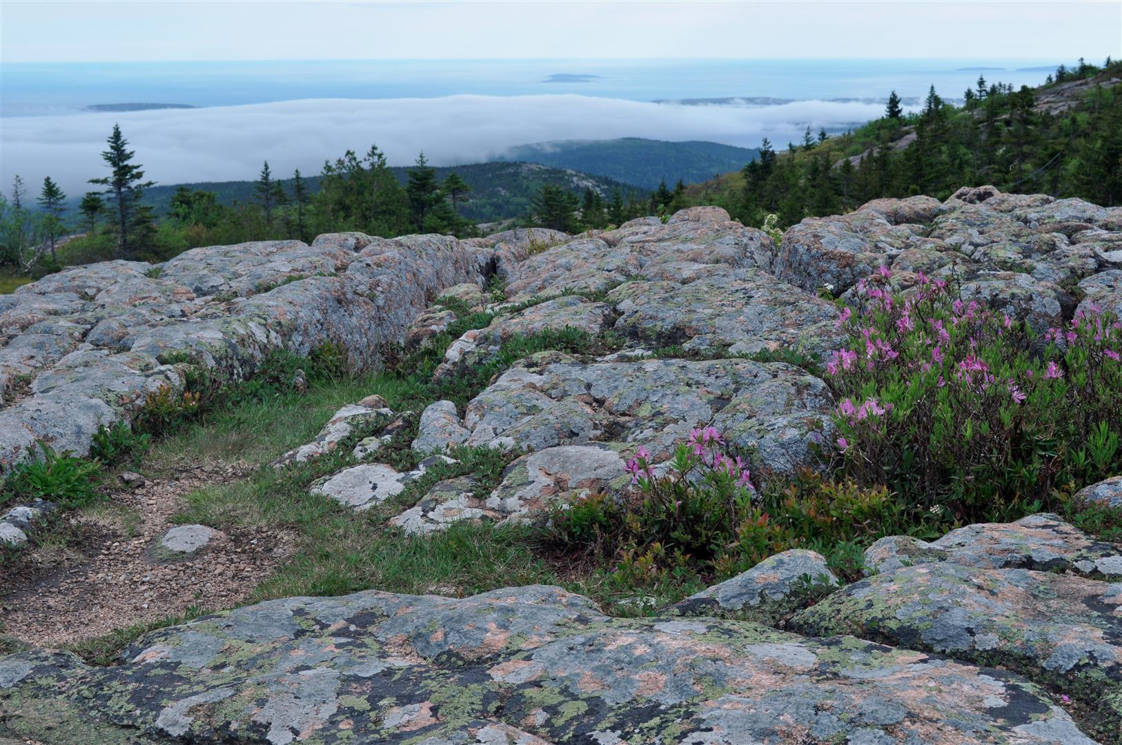 Cadillac Mountain 2