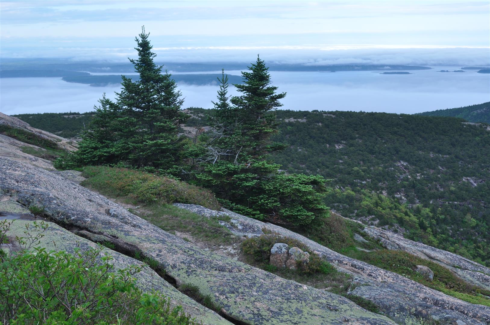 Cadillac Mountain 5