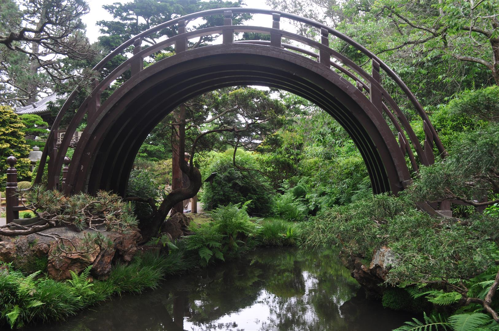 Bridge, Japanese Tea Garden