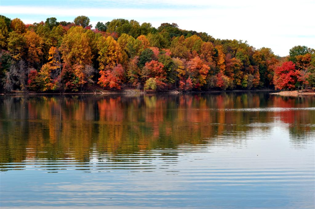 Lake Needwood,  Autumn 2